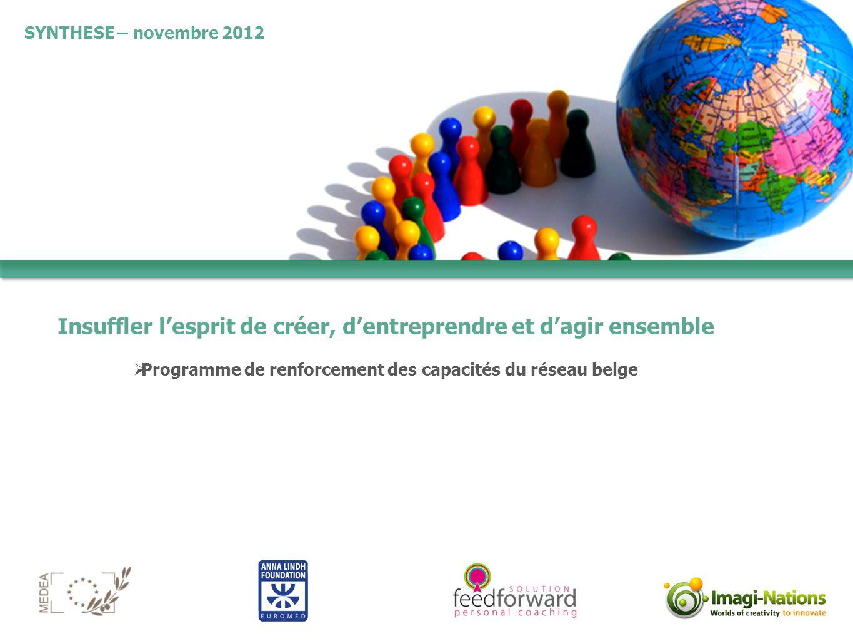 Insuffler l'esprit de créer, d'entreprendre et d'agir ensemble  Programme de renforcement des capacités du réseau belge SYNTHESE – novembre 2012