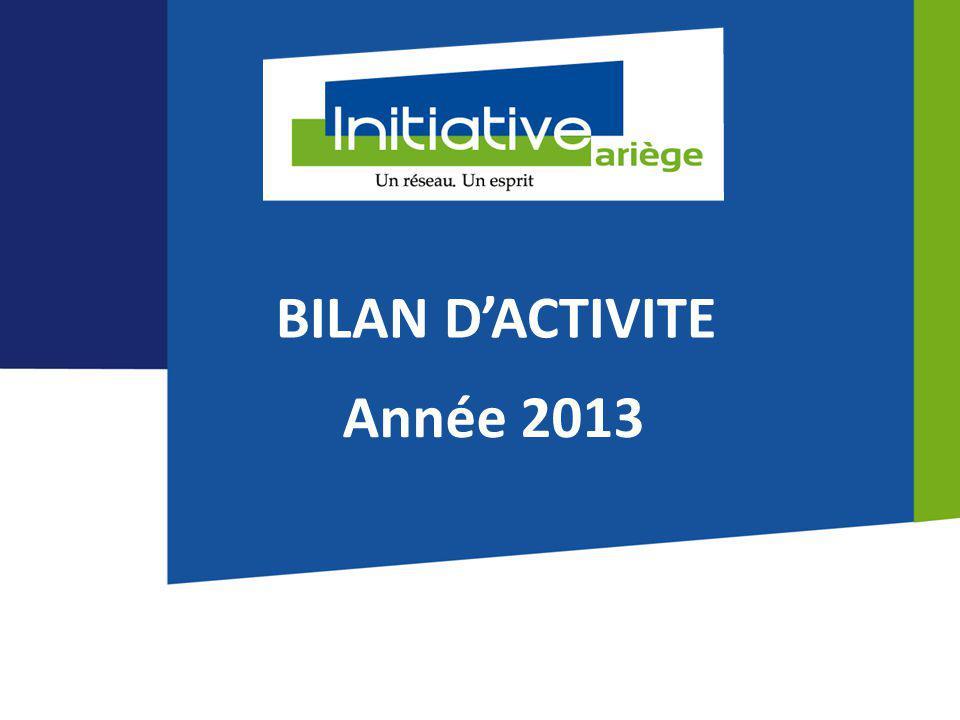 BILAN D'ACTIVITE Année 2013