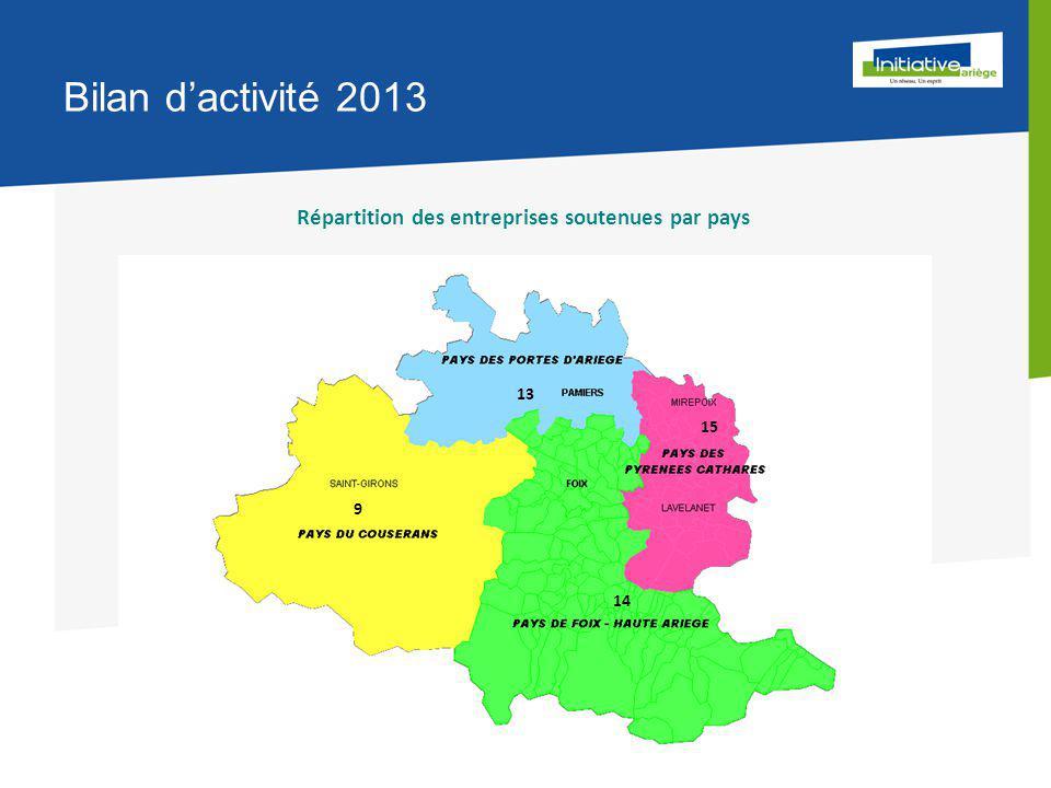 Bilan d'activité 2013 Répartition des entreprises soutenues par pays 13 15 14 9
