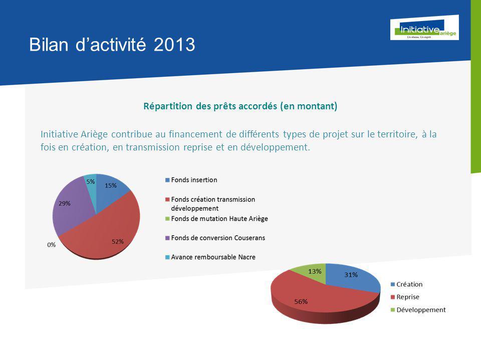 Bilan d'activité 2013 Répartition des prêts accordés (en montant) Initiative Ariège contribue au financement de différents types de projet sur le territoire, à la fois en création, en transmission reprise et en développement.