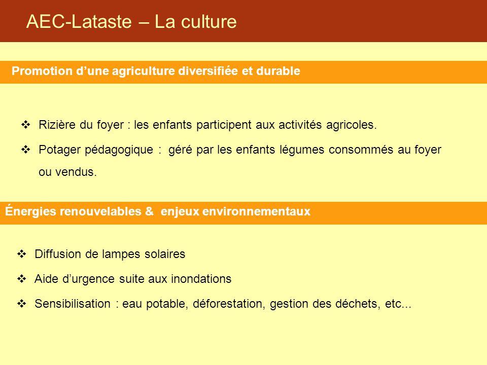 AEC-Lataste – La culture Promotion d'une agriculture diversifiée et durable Énergies renouvelables & enjeux environnementaux  Rizière du foyer : les