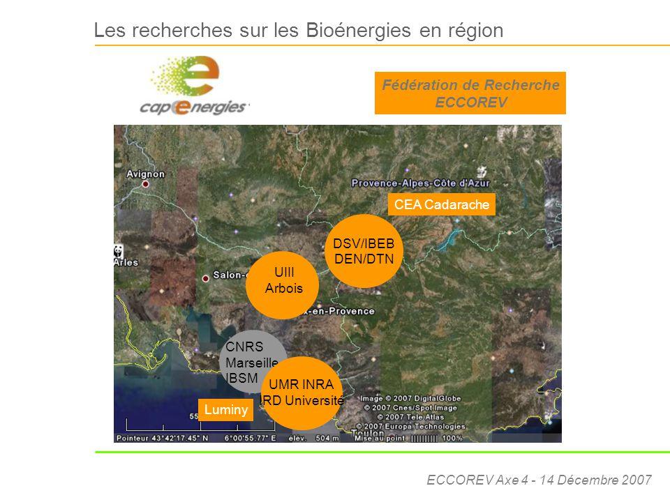 ECCOREV Axe 4 - 14 Décembre 2007 Les recherches sur les Bioénergies en région Luminy DSV/IBEB DEN/DTN CEA Cadarache Luminy CNRS Marseille IBSM UIII Ar