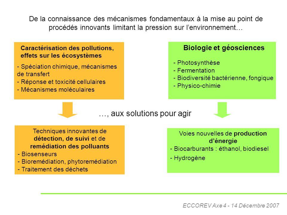ECCOREV Axe 4 - 14 Décembre 2007 Caractérisation des pollutions, effets sur les écosystèmes - Spéciation chimique, mécanismes de transfert - Réponse e