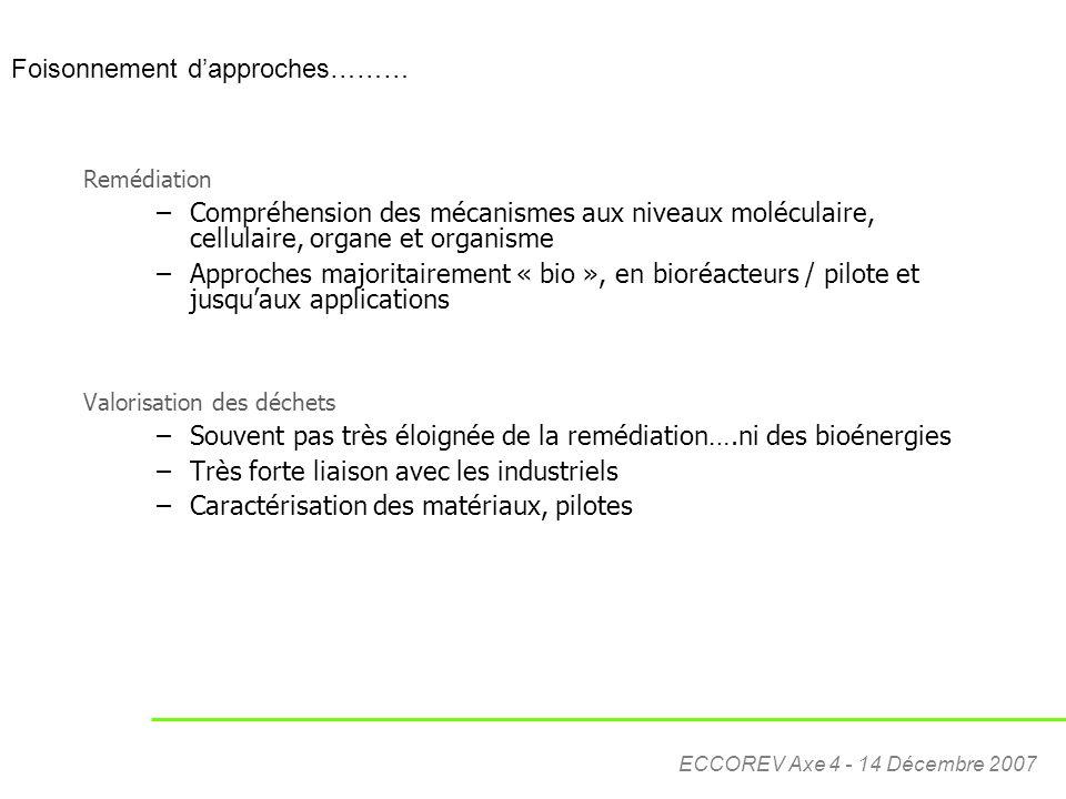 ECCOREV Axe 4 - 14 Décembre 2007 Remédiation –Compréhension des mécanismes aux niveaux moléculaire, cellulaire, organe et organisme –Approches majorit