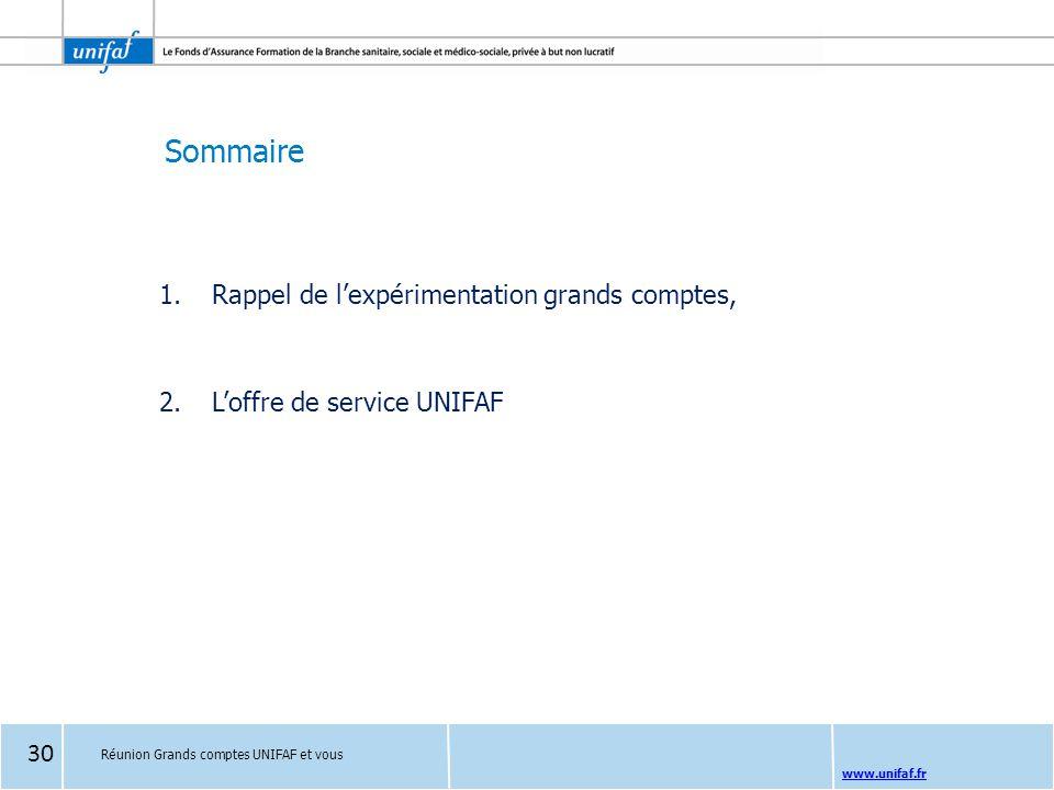 Sommaire www.unifaf.fr 1.Rappel de l'expérimentation grands comptes, 2.L'offre de service UNIFAF Réunion Grands comptes UNIFAF et vous 30