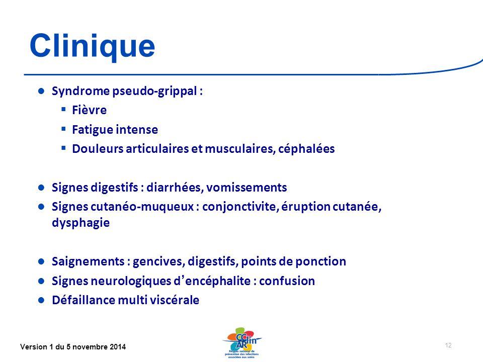 Version 1 du 5 novembre 2014 Clinique Syndrome pseudo-grippal :  Fièvre  Fatigue intense  Douleurs articulaires et musculaires, céphalées Signes digestifs : diarrhées, vomissements Signes cutanéo-muqueux : conjonctivite, éruption cutanée, dysphagie Saignements : gencives, digestifs, points de ponction Signes neurologiques d'encéphalite : confusion Défaillance multi viscérale 12