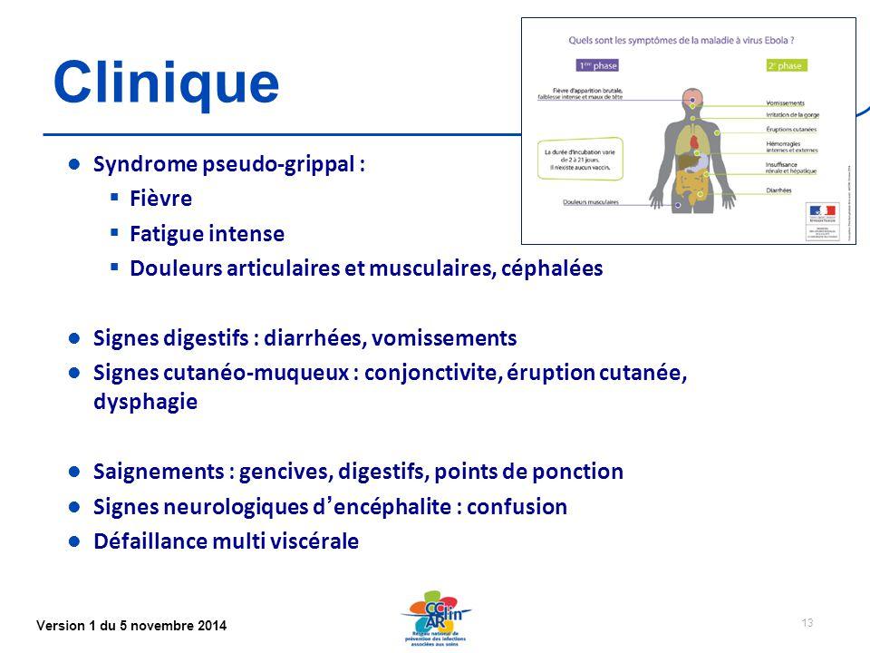Version 1 du 5 novembre 2014 Clinique Syndrome pseudo-grippal :  Fièvre  Fatigue intense  Douleurs articulaires et musculaires, céphalées Signes digestifs : diarrhées, vomissements Signes cutanéo-muqueux : conjonctivite, éruption cutanée, dysphagie Saignements : gencives, digestifs, points de ponction Signes neurologiques d'encéphalite : confusion Défaillance multi viscérale 13