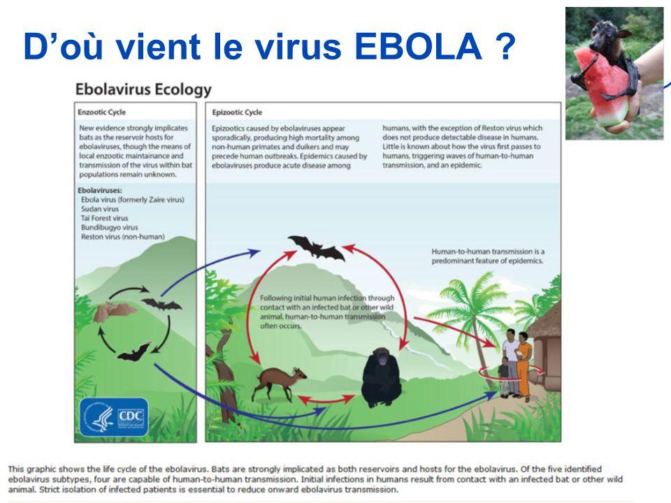 Version 1 du 5 novembre 2014 D'où vient le virus EBOLA ? 4