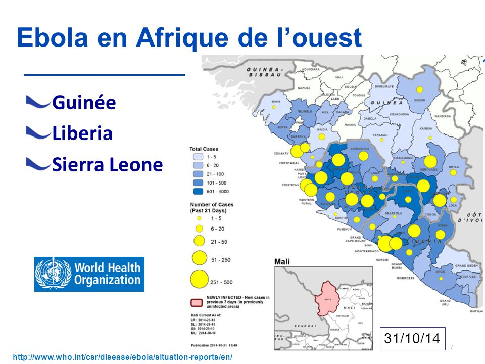 Version 1 du 5 novembre 2014 Ebola en Afrique de l'ouest Guinée Liberia Sierra Leone http://www.who.int/csr/disease/ebola/situation-reports/en/ 7 31/10/14
