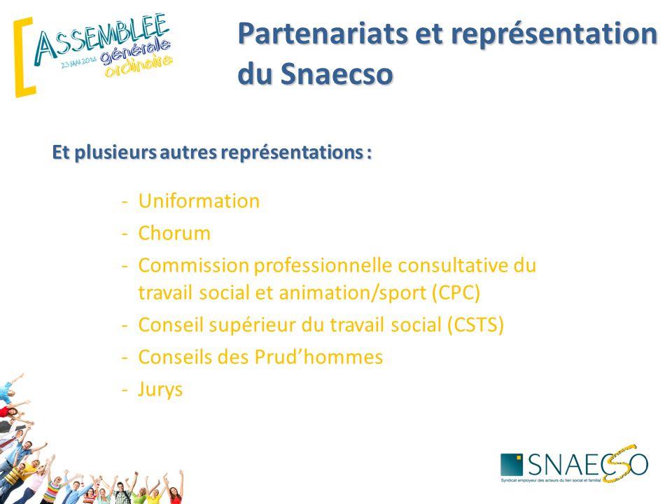 Et plusieurs autres représentations : -Uniformation -Chorum -Commission professionnelle consultative du travail social et animation/sport (CPC) -Conse