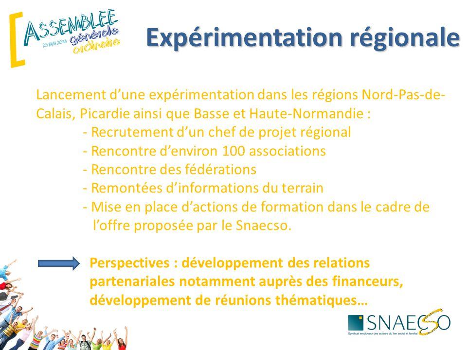 Lancement d'une expérimentation dans les régions Nord-Pas-de- Calais, Picardie ainsi que Basse et Haute-Normandie : - Recrutement d'un chef de projet régional - Rencontre d'environ 100 associations - Rencontre des fédérations - Remontées d'informations du terrain - Mise en place d'actions de formation dans le cadre de l'offre proposée par le Snaecso.