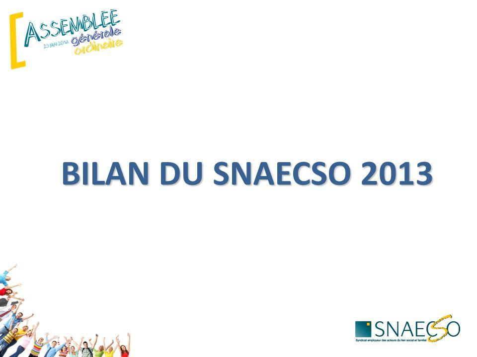 BILAN DU SNAECSO 2013