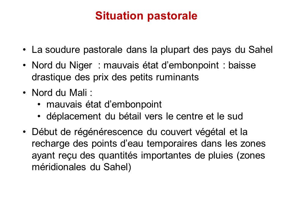 Situation pastorale La soudure pastorale dans la plupart des pays du Sahel Nord du Niger : mauvais état d'embonpoint : baisse drastique des prix des p