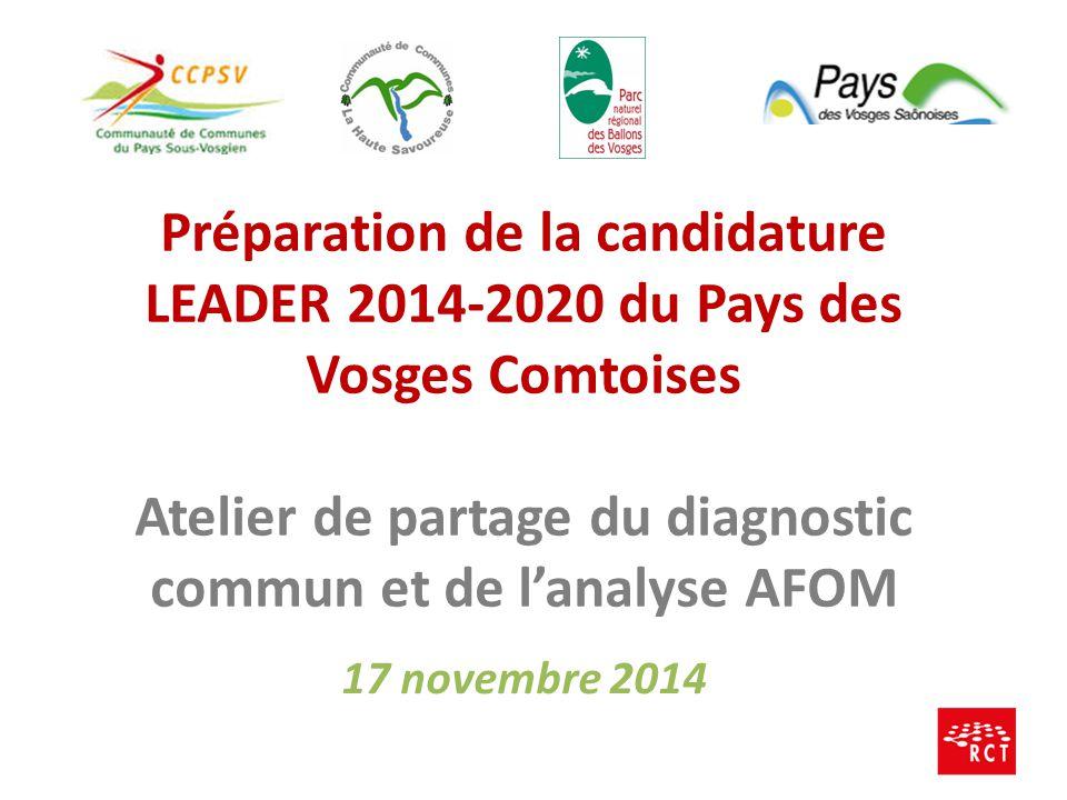 17 novembre 2014 Préparation de la candidature LEADER 2014-2020 du Pays des Vosges Comtoises Atelier de partage du diagnostic commun et de l'analyse A
