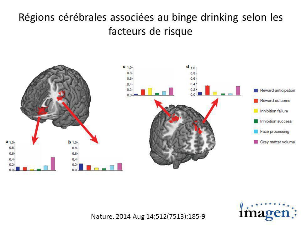 Régions cérébrales associées au binge drinking selon les facteurs de risque Nature.