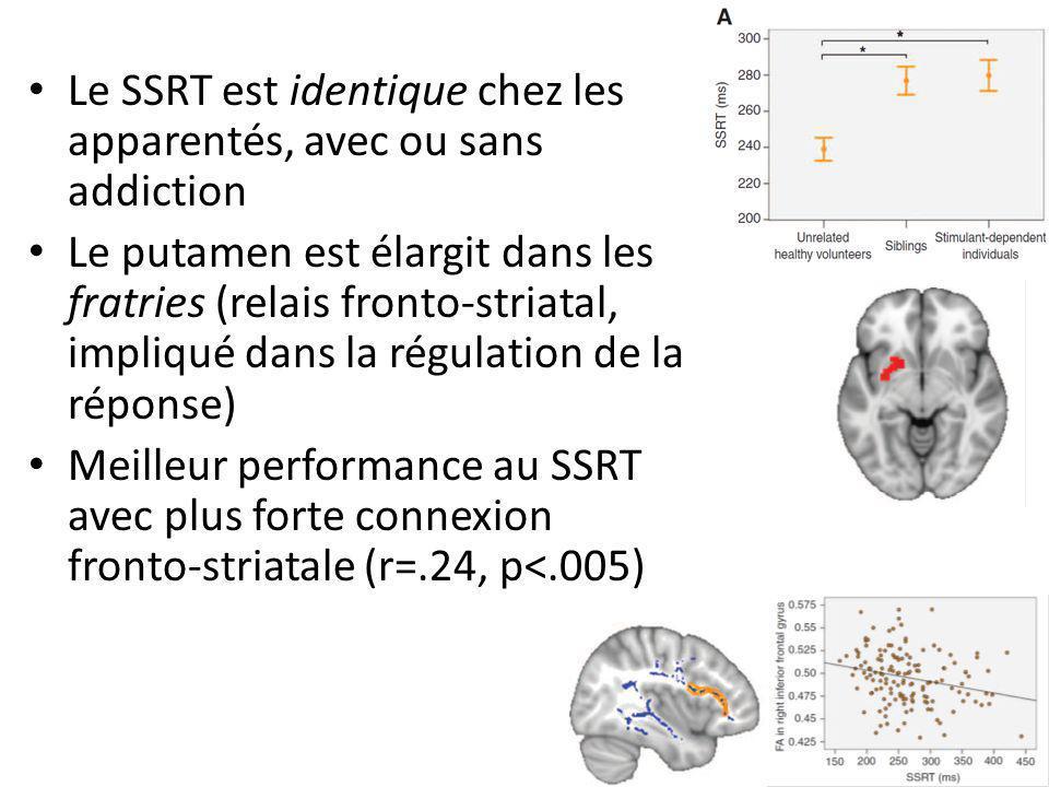 Le SSRT est identique chez les apparentés, avec ou sans addiction Le putamen est élargit dans les fratries (relais fronto-striatal, impliqué dans la régulation de la réponse) Meilleur performance au SSRT avec plus forte connexion fronto-striatale (r=.24, p<.005)