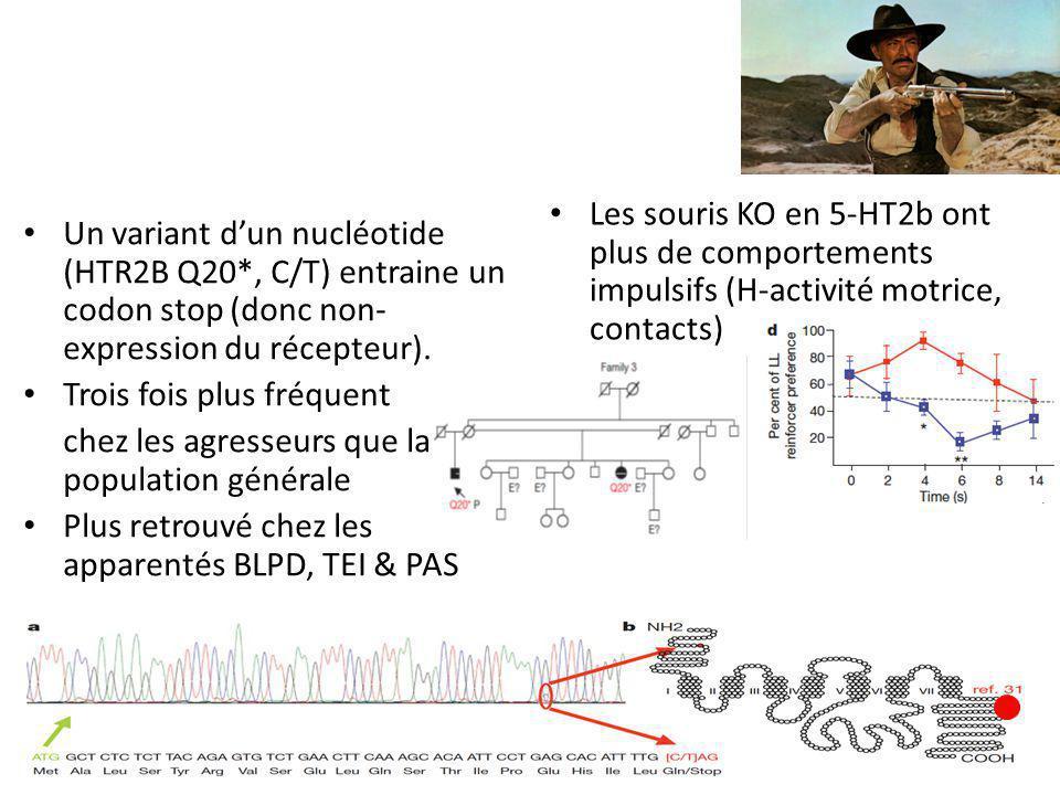 Un variant d'un nucléotide (HTR2B Q20*, C/T) entraine un codon stop (donc non- expression du récepteur).
