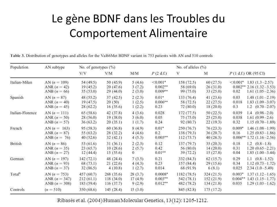 Le gène BDNF dans les Troubles du Comportement Alimentaire Ribasés et al.