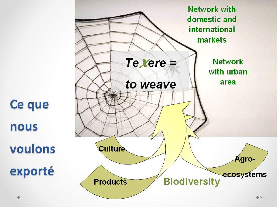 X La Mission de Te X ere Groupe: o Bio-économie: 4F (Food + Feed + Fuel + Fiber) (Nourriture + Provende + Carburant + Fibres) o Rotation des cultures o Qualité: traçabilité (ISO 22005) o Fournisseurs des chaines intégrés 6