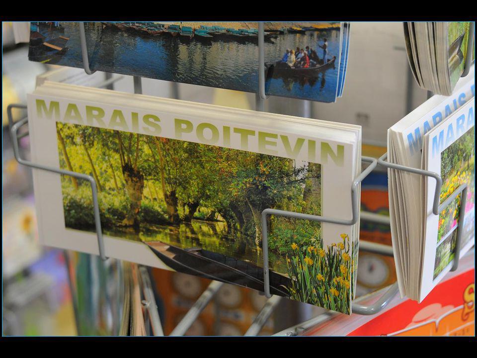 Les voyages BUCHARD en Charente-Maritime Printemps 2014 Marais Poitevin Défilement automatique