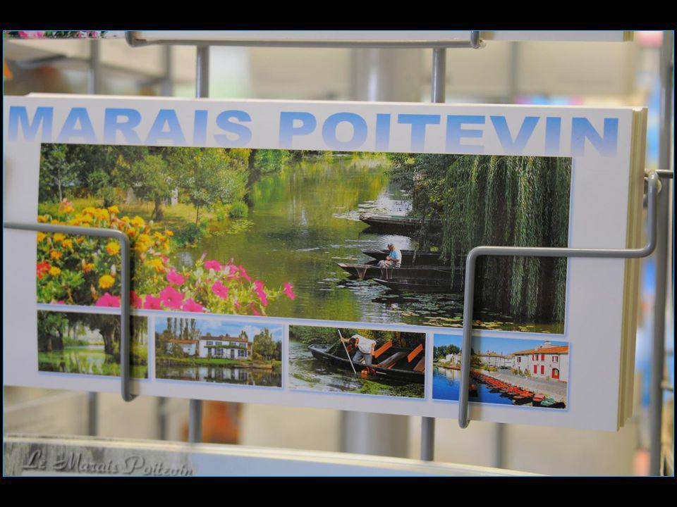 Le Marais Poitevin est une région naturelle de France située entre les départements de Vendée, des Deux-Sèvres et de Charente-Maritime