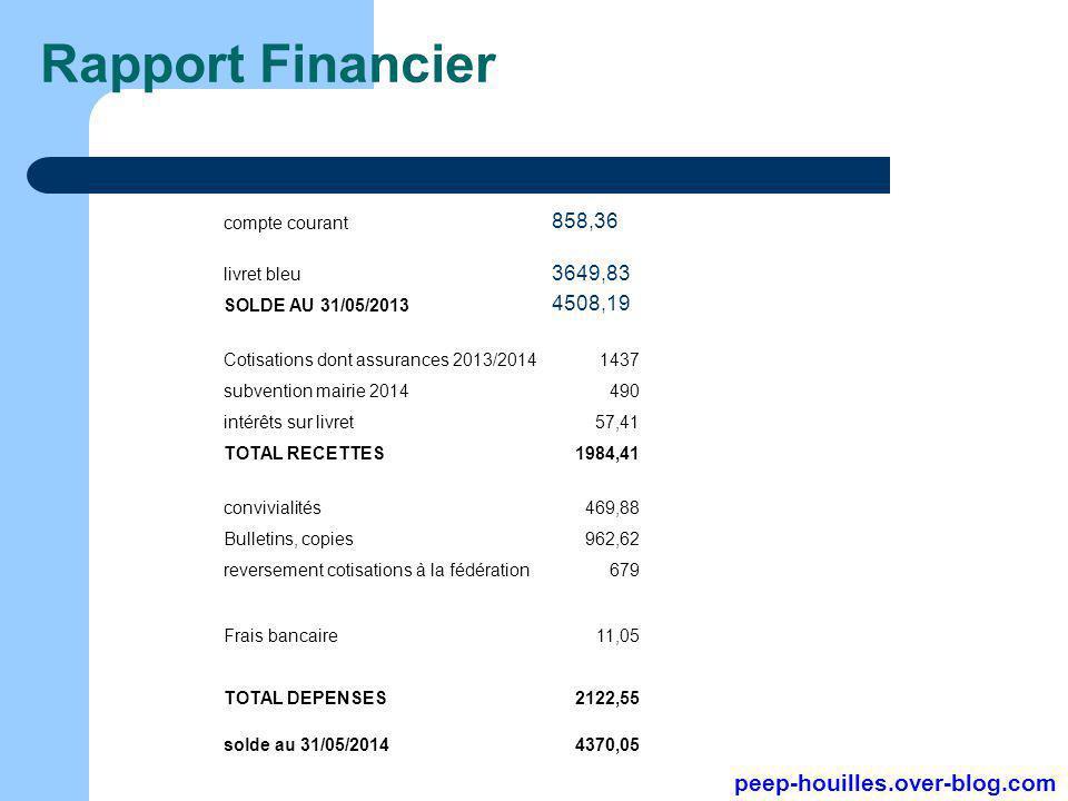 Rapport Financier compte courant 858,36 livret bleu 3649,83 SOLDE AU 31/05/2013 4508,19 Cotisations dont assurances 2013/20141437 subvention mairie 20