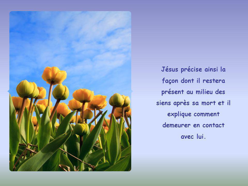 Jésus répond au contraire qu'il ne se manifestera pas de façon extérieure et spectaculaire.
