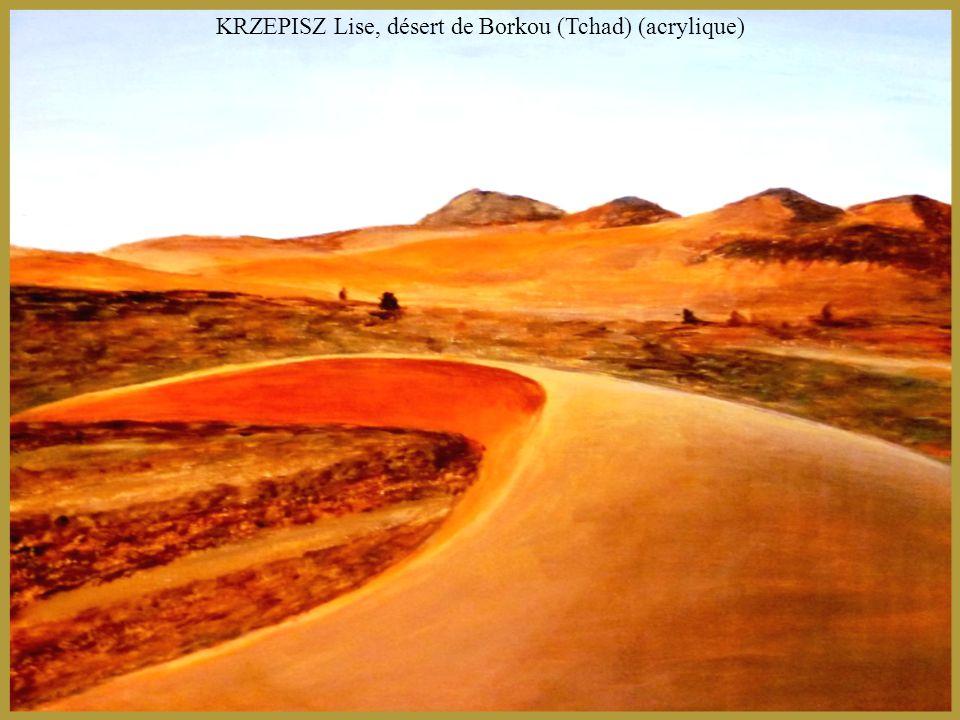 KRZEPISZ Lise, désert de Borkou (Tchad) (acrylique)