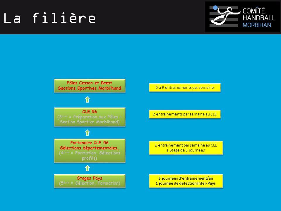 La filière Stages Pays (5 ème = Sélection, Formation) Stages Pays (5 ème = Sélection, Formation) Partenaire CLE 56 Sélections départementales, (4 ème = Formation, Sélections profils) Partenaire CLE 56 Sélections départementales, (4 ème = Formation, Sélections profils) CLE 56 (3 ème = Préparation aux Pôles – Section Sportive Morbihand) CLE 56 (3 ème = Préparation aux Pôles – Section Sportive Morbihand) Pôles Cesson et Brest Sections Sportives Morbi'hand Pôles Cesson et Brest Sections Sportives Morbi'hand 5 journées d'entraînement/an 1 journée de détection Inter-Pays 5 journées d'entraînement/an 1 journée de détection Inter-Pays 1 entraînement par semaine au CLE 1 Stage de 3 journées 1 entraînement par semaine au CLE 1 Stage de 3 journées 2 entraînements par semaine au CLE 5 à 9 entrainements par semaine