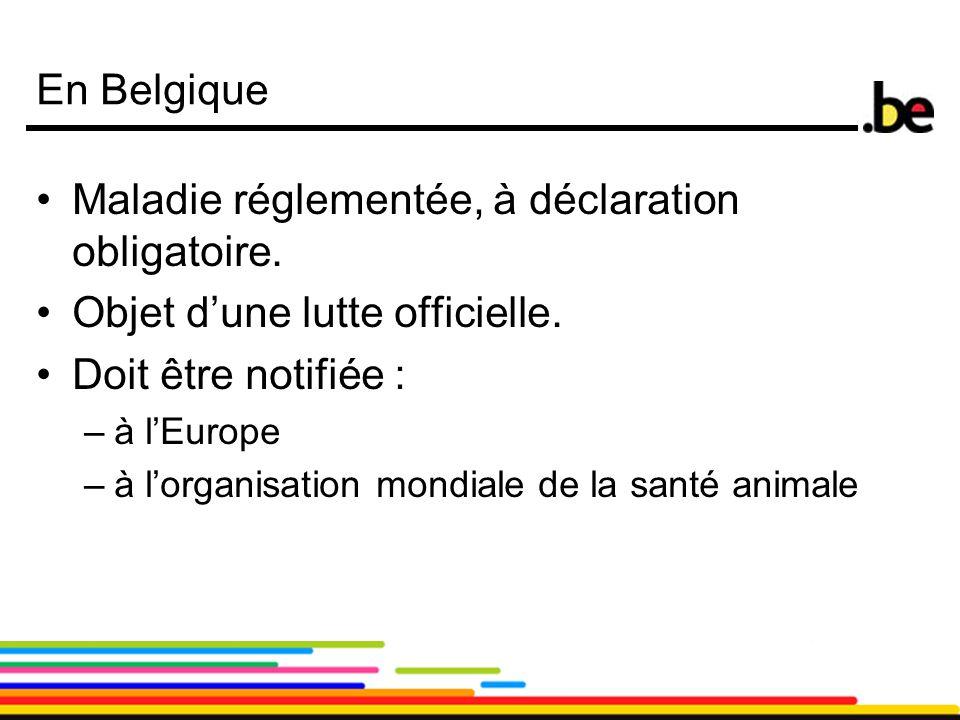 5 En Belgique Maladie réglementée, à déclaration obligatoire. Objet d'une lutte officielle. Doit être notifiée : –à l'Europe –à l'organisation mondial