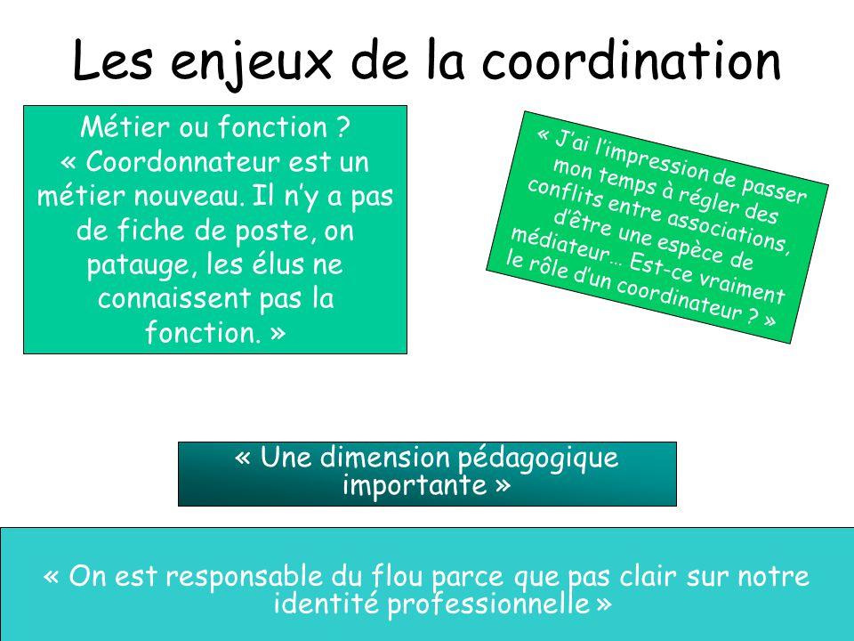 Les enjeux de la coordination « On est responsable du flou parce que pas clair sur notre identité professionnelle » Métier ou fonction ? « Coordonnate