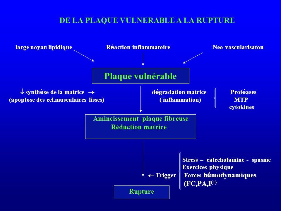 DE LA PLAQUE VULNERABLE A LA RUPTURE large noyau lipidique R é action inflammatoire Neo-vascularisaton  synth è se de la matrice  d é gradation matr