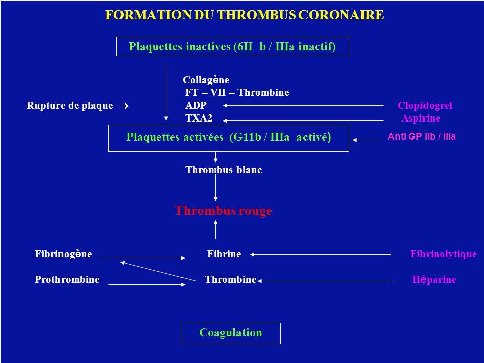 FORMATION DU THROMBUS CORONAIRE Collag è ne FT – VII – Thrombine Rupture de plaque  ADP Clopidogrel TXA2 Aspirine Thrombus blanc Thrombus rouge Fibri