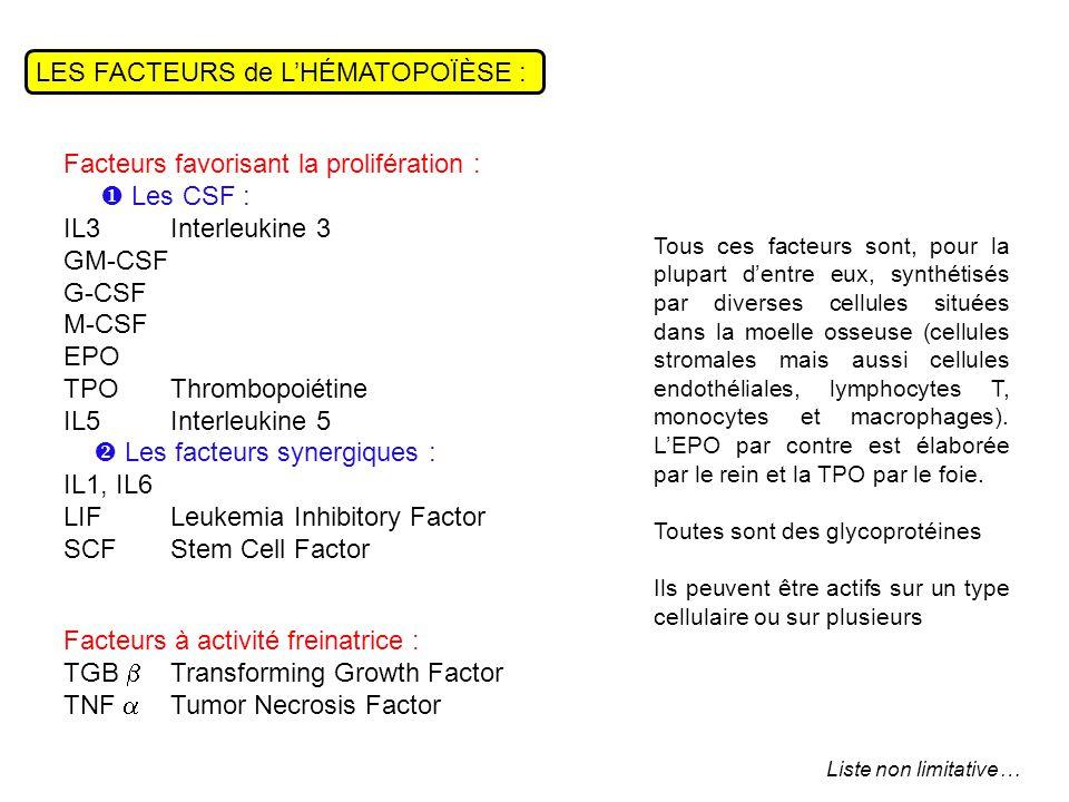 LES FACTEURS de L'HÉMATOPOÏÈSE : Facteurs favorisant la prolifération :  Les CSF : IL3 Interleukine 3 GM-CSF G-CSF M-CSF EPO TPOThrombopoiétine IL5Interleukine 5  Les facteurs synergiques : IL1, IL6 LIFLeukemia Inhibitory Factor SCFStem Cell Factor Facteurs à activité freinatrice : TGB  Transforming Growth Factor TNF  Tumor Necrosis Factor Tous ces facteurs sont, pour la plupart d'entre eux, synthétisés par diverses cellules situées dans la moelle osseuse (cellules stromales mais aussi cellules endothéliales, lymphocytes T, monocytes et macrophages).