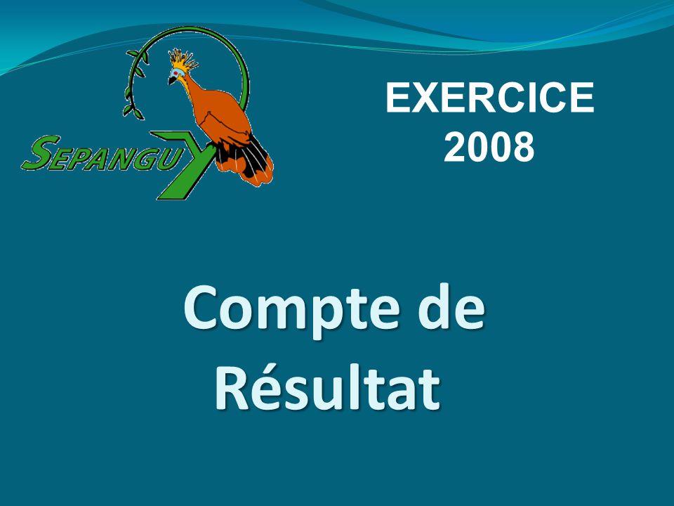 Compte de Résultat EXERCICE 2008