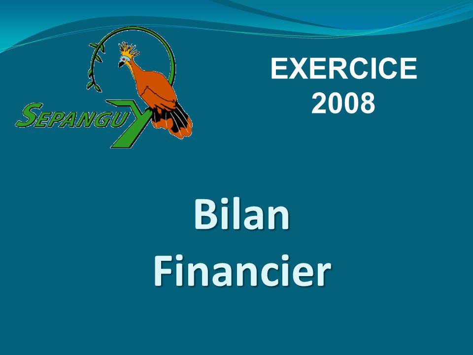 Bilan Financier EXERCICE 2008