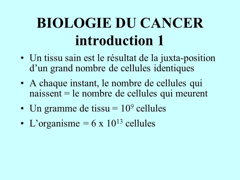 BIOLOGIE DU CANCER introduction 1 Un tissu sain est le résultat de la juxta-position d'un grand nombre de cellules identiques A chaque instant, le nom