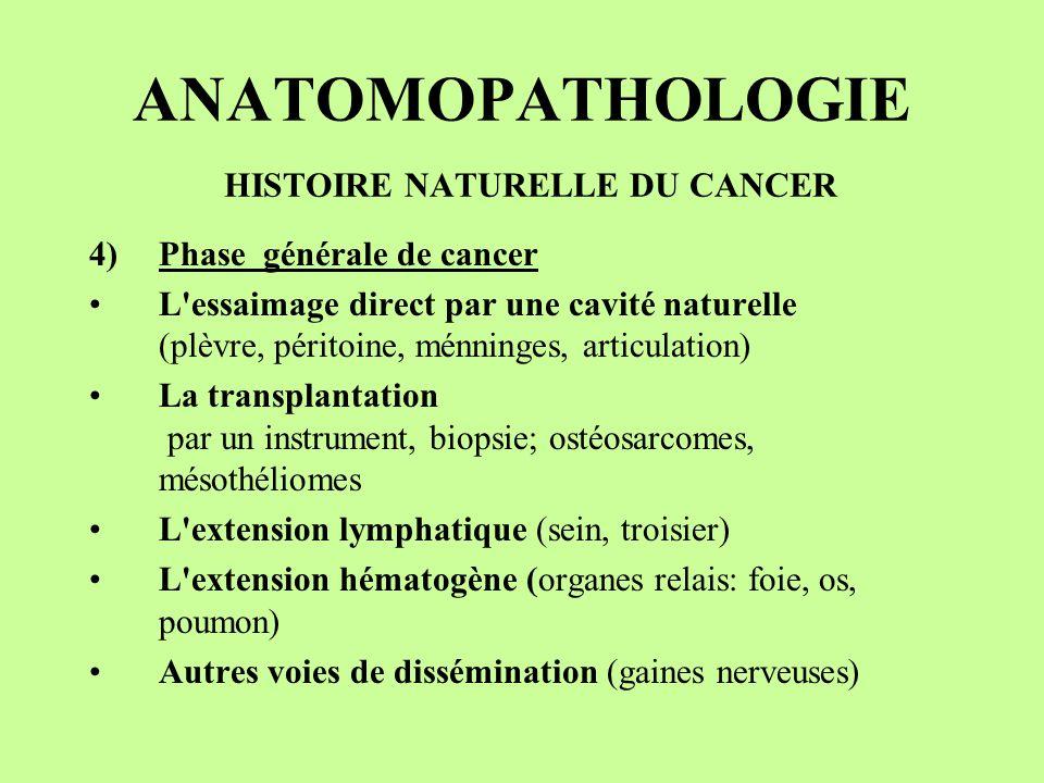 ANATOMOPATHOLOGIE HISTOIRE NATURELLE DU CANCER 4)Phase générale de cancer L'essaimage direct par une cavité naturelle (plèvre, péritoine, ménninges, a