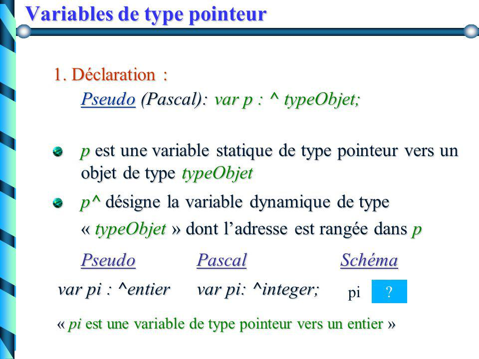 Variables de type pointeurs La mise en place d'une variable dynamique se déroule en trois étapes : 1. Déclaration de la variable pointeur 2. Initialis