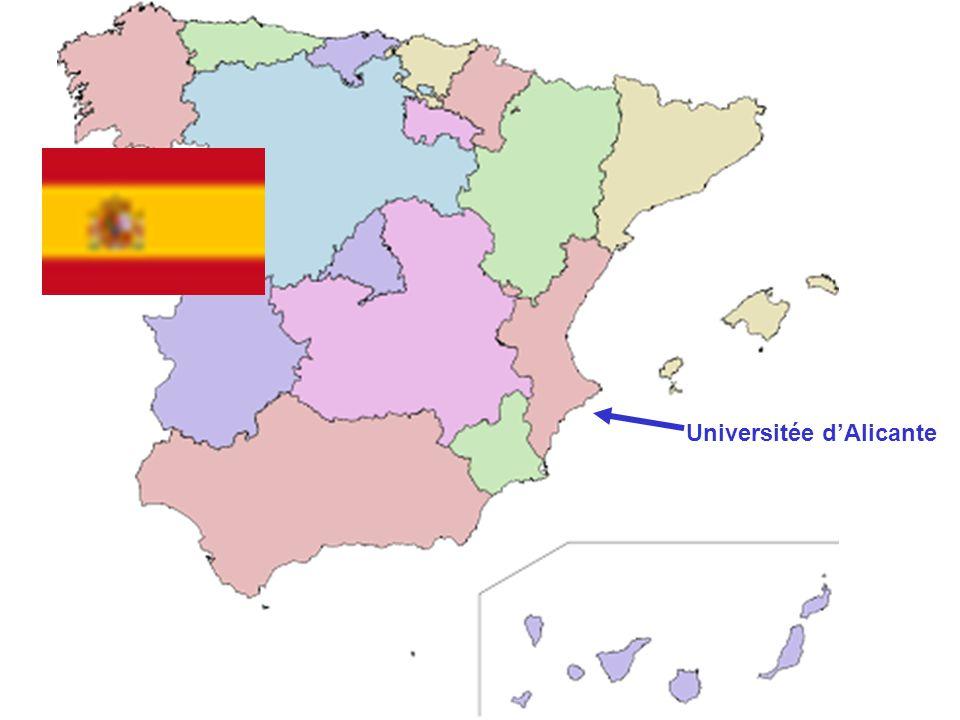 Universitée d'Alicante