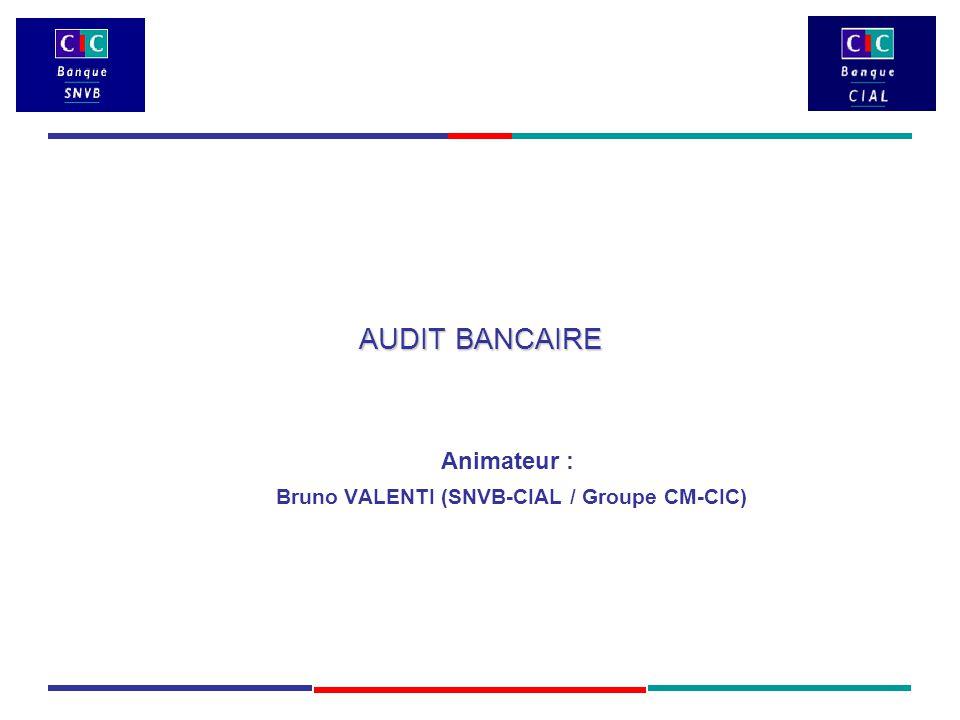 AUDIT BANCAIRE Animateur : Bruno VALENTI (SNVB-CIAL / Groupe CM-CIC)
