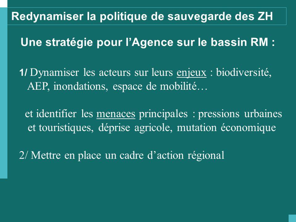 Redynamiser la politique de sauvegarde des ZH Une stratégie pour l'Agence sur le bassin RM : 1/ Dynamiser les acteurs sur leurs enjeux : biodiversité,