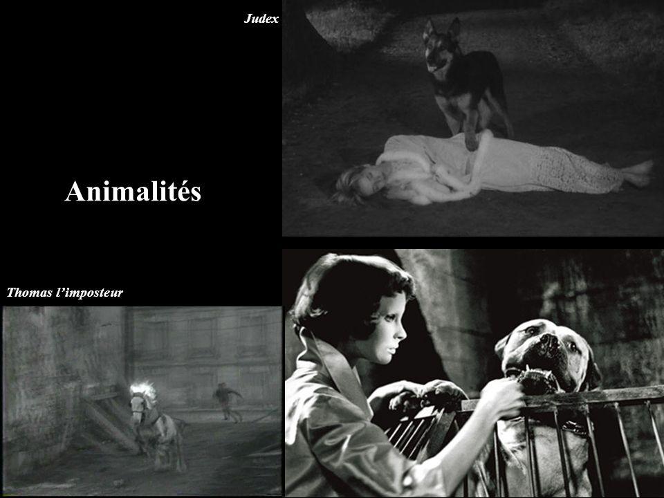 Animalités Judex Thomas l'imposteur
