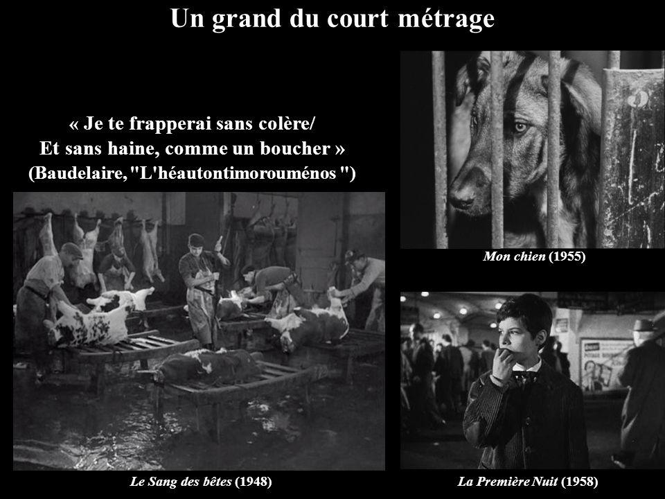 Un grand du court métrage Le Sang des bêtes (1948)La Première Nuit (1958) « Je te frapperai sans colère/ Et sans haine, comme un boucher » (Baudelaire, L héautontimorouménos ) Mon chien (1955)