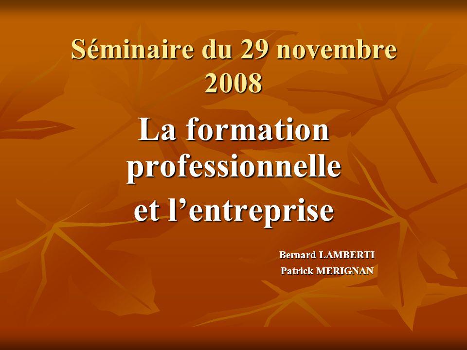 Séminaire du 29 novembre 2008 La formation professionnelle et l'entreprise Bernard LAMBERTI Patrick MERIGNAN
