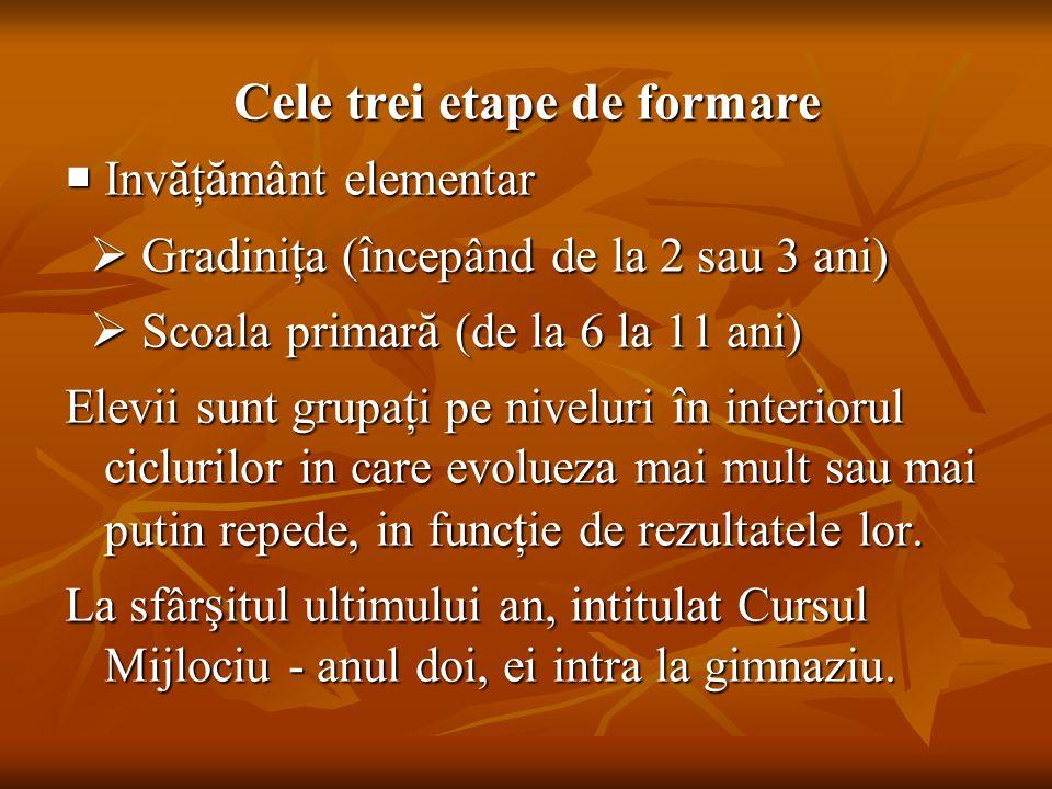 Cele trei etape de formare  Inv ăţă mânt elementar  Gradini ţ a ( î ncepând de la 2 sau 3 ani)  Gradini ţ a ( î ncepând de la 2 sau 3 ani)  Scoala