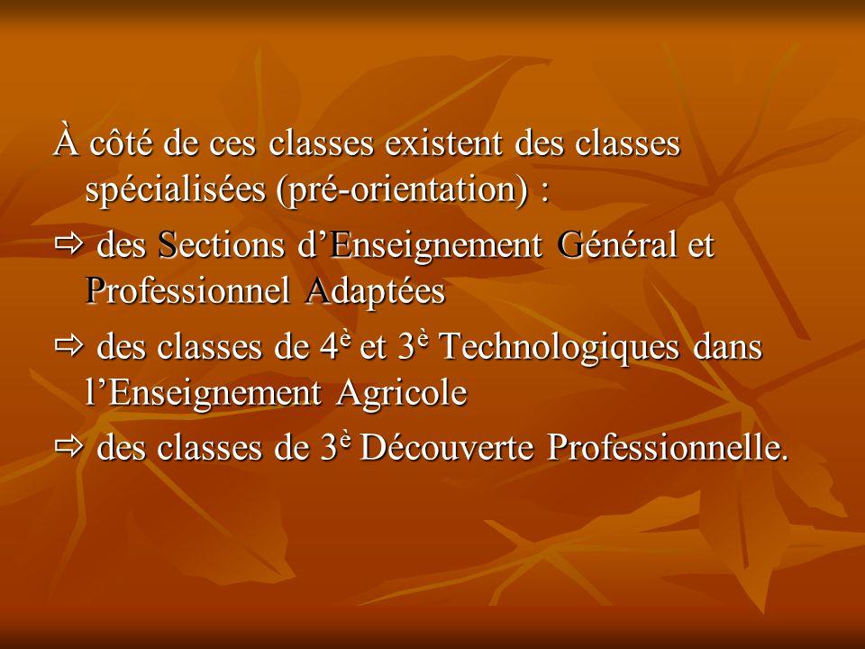 À côté de ces classes existent des classes spécialisées (pré-orientation) :  des Sections d'Enseignement Général et Professionnel Adaptées  des clas