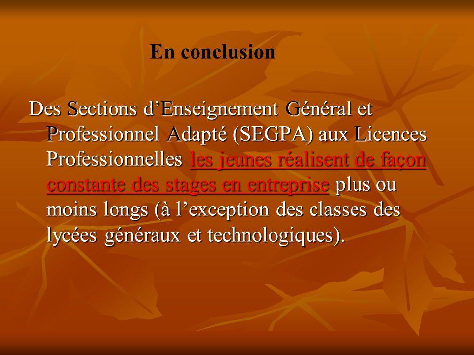 Des Sections d'Enseignement Général et Professionnel Adapté (SEGPA) aux Licences Professionnelles les jeunes réalisent de façon constante des stages e