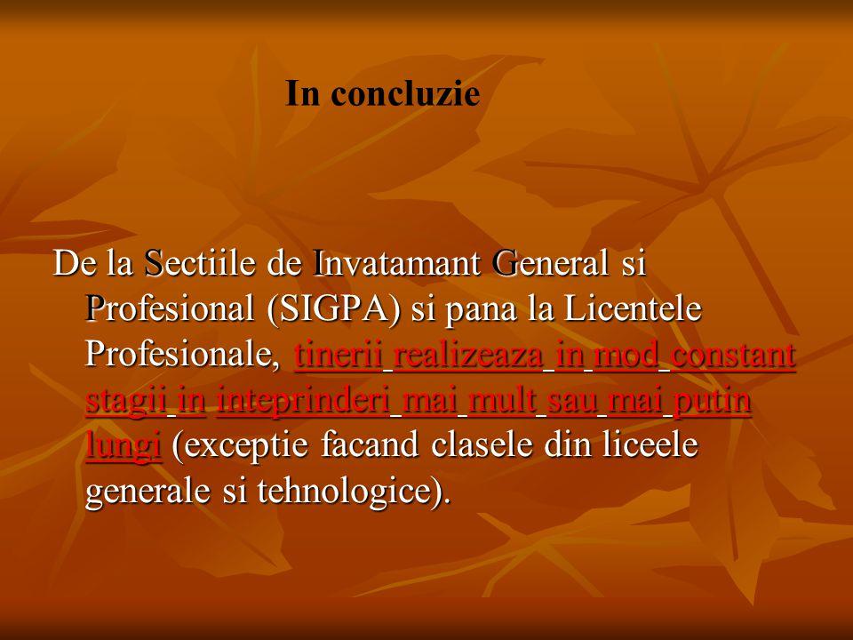 De la Sectiile de Invatamant General si Profesional (SIGPA) si pana la Licentele Profesionale, tinerii realizeaza in mod constant stagii in inteprinde
