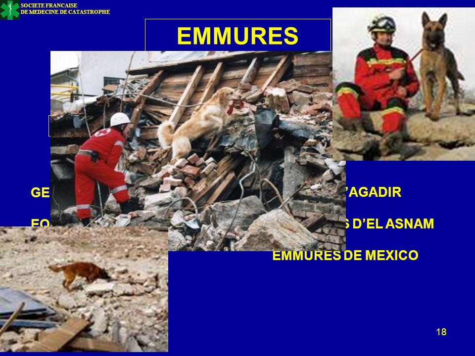 Bucarest – H. Julien- oct. 2011 18 EMMURES LOCALISATION DELAIS DE SURVIE GEOLOCALISATION EQUIPES CYNOPHILES RENSEIGNEMENTS EMMURE D'AGADIR EMMUREES D'